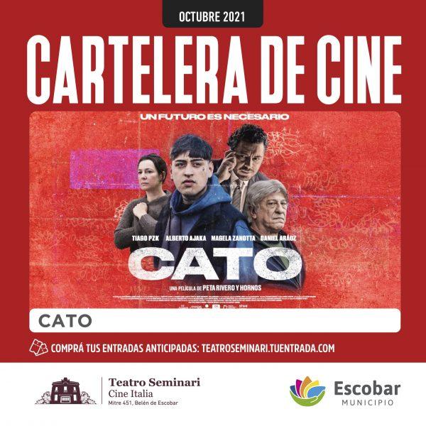 CATO REDES_FEED copia
