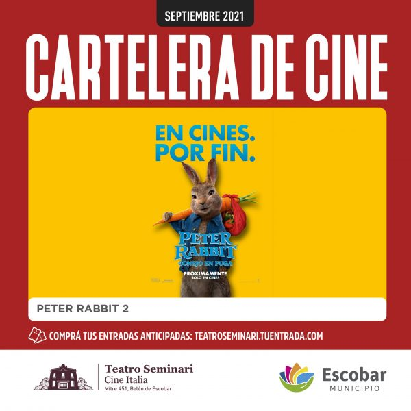 PETER RABBIT REDES_FEED copia