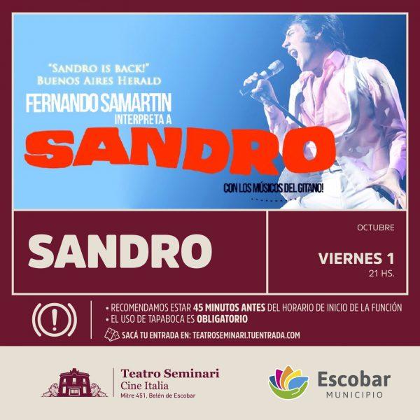 VIER 1 SANDRO_FEED